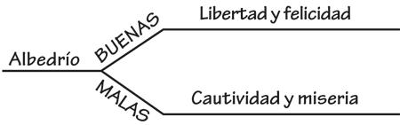 El Albedrío Es El Don De Escoger Por Mí Mismo Conexión Sud