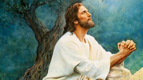 """Esta es la vida eterna"""