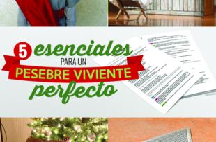 5 esenciales para un pesebre viviente perfecto - Conexión SUD