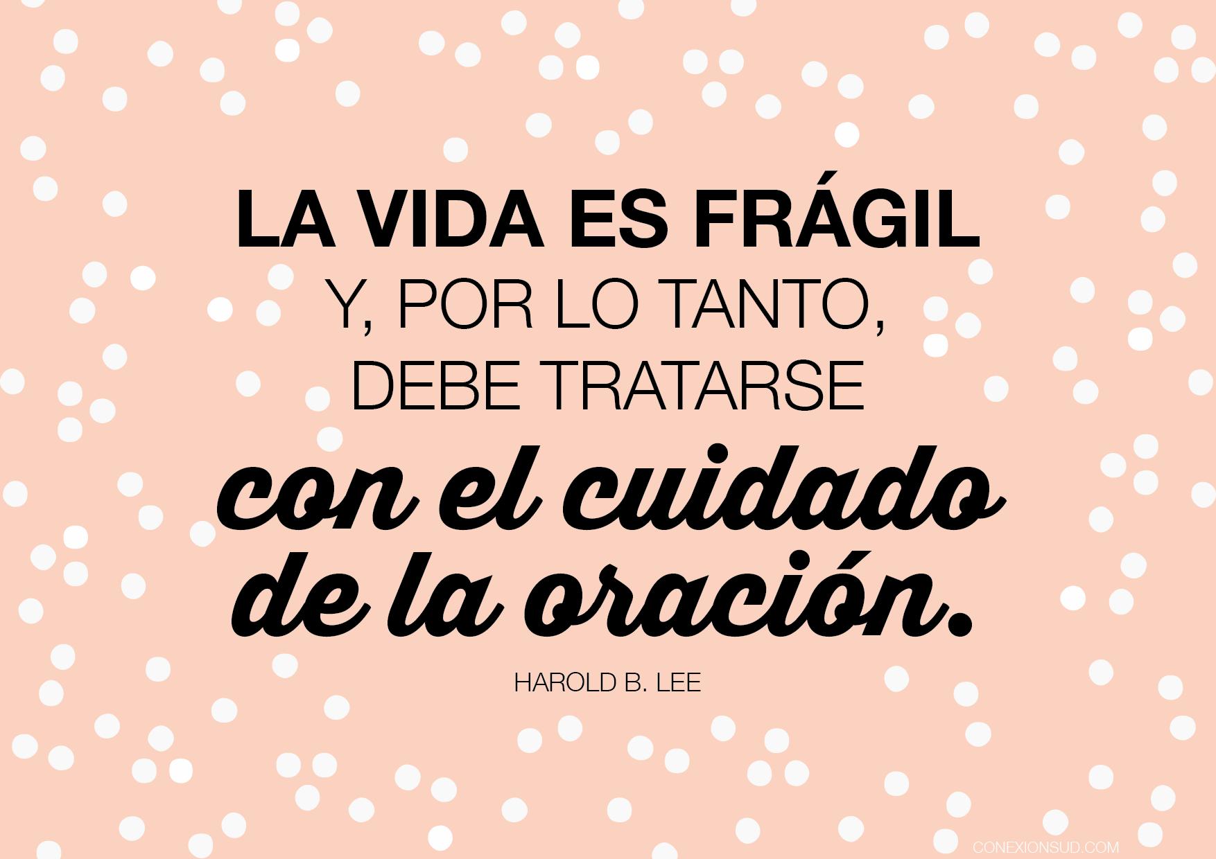 La vida es frágil y, por lo tanto, debe tratarse con el cuidado de la oración - Conexión SUD